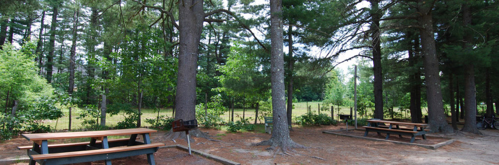 Picnic Area at Sanford Manor Apartments